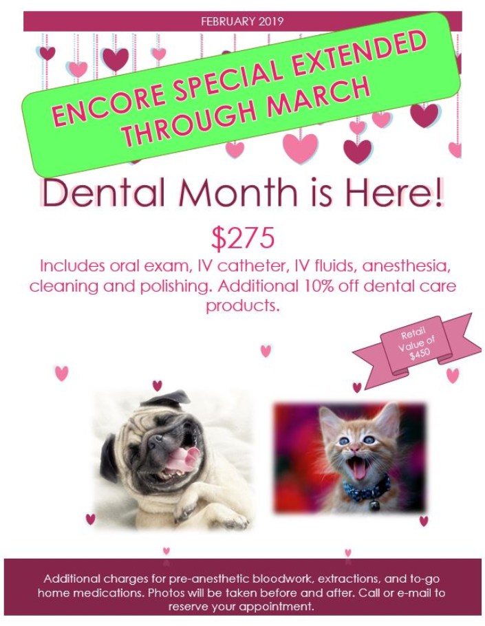 Dental promo extended through March, $275, call for details