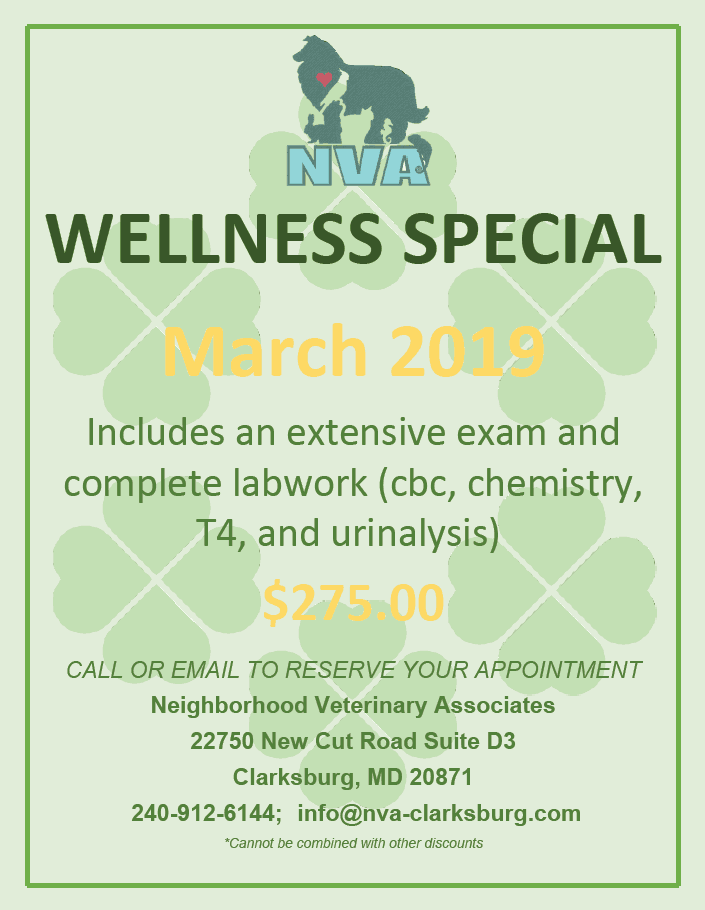 March Wellness Special, $275 for exam & labwork, call for details